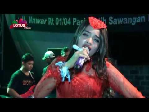 Mahal Yusnia Zebro Lotus Music AMBC