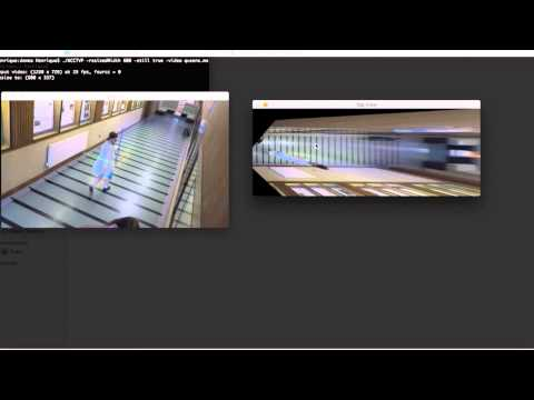 Automatic Camera Calibration for Top-View Projection - Demo