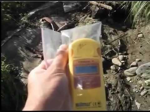 Japan: Radioactive Fukushima Peaches Exports To Thailand