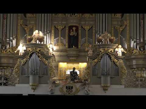 Концерт органной музыки.