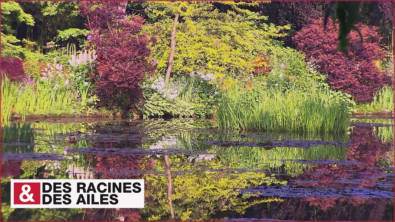 Le jardin de monet giverny youtube - Les jardins de monet ...