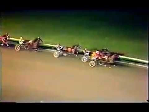 DRIVERS: SHELLY GOUDREAU HARNESS