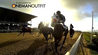 Santa Rosa Park NLCB 2015 Easter Guineas by OneManOutfit