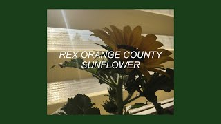 SUNFLOWER REX ORANGE COUNTY LYRICS