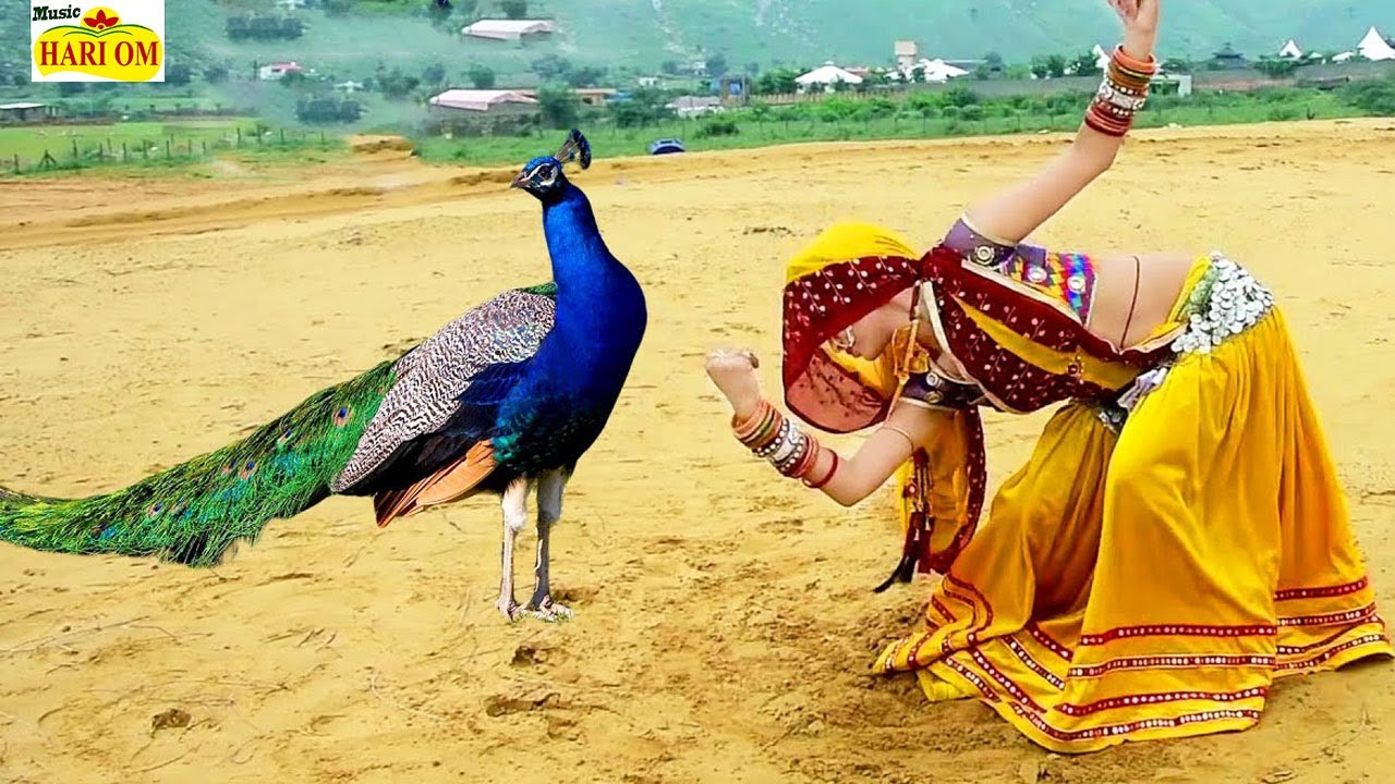 इस राजस्थानी DJ सॉन्ग को सुन कर आप का दिल खुश हो जायेगा - थारी याद सतावे | Latest Rajasthani Songs