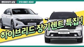 하이브리드 장기렌트 특집!!!
