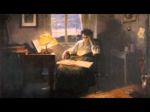 NHD Documentary Beethoven: A Musical Prodigy Who Composed the Sounds of the Modern World