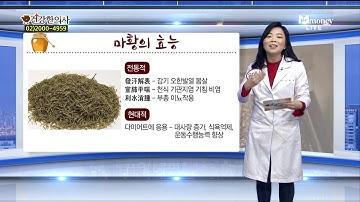 온중한의원 윤미나-건강꿀팁 마황