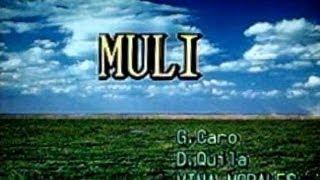 [26448] MULI (Vina Morales) ~ 금영 노래방/KumYoung 코러스 3000 Karaoke/Videoke