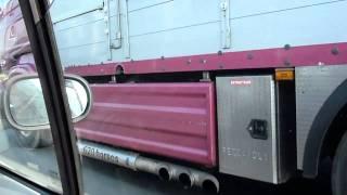 Scania Malpart  (livestock-express.sky