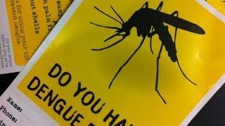 «Новичок» отравляющий газ от комара денге в Таиланде  Март 2018