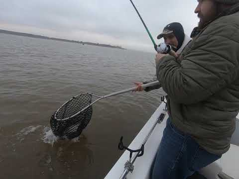 Lake Texoma Stripper Fishing With Captain Marty