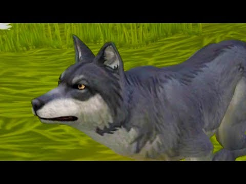 Видео Симулятор щенка онлайн