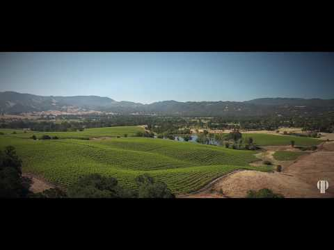 Wine Country Estate | 9981 Spring Valley Road, Potter Valley California