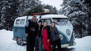 Christmas Tree Hunting in Split Window Volkswagen Bus.