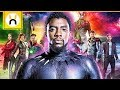 How Black Panther Will Set Up Avengers Infinity War