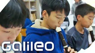 Waldorfschule International: Wie das Konzept in Südkorea ankommt | Galileo | ProSieben