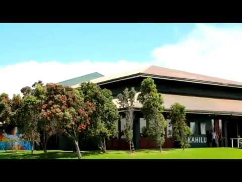 Kahilu Theatre funding