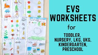 Daily Practice EVS Worksheets for Toddler, Nursery, LKG, UKG, Kindergarten, Preschool | Part-3