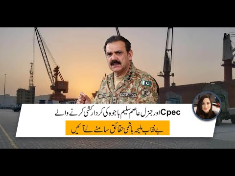 Maleeha Hashmi: MALEEHA HASMEY EXPOSED THE ELEMENT CONSPIRING AGAINST CPEC