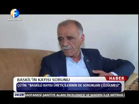 Kanal Fırat Haber - Baskil'in Kayısı Sorunu