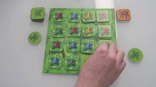 Let's Play Flip Over Frog!
