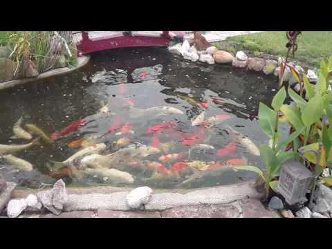 Fish Chime