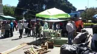 Arrebatan hippies del Colectivo La Jícara de Xochipilli espacios a mujeres triquis de Copala