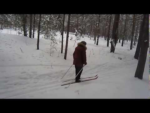 Лыжные прогулки в парке