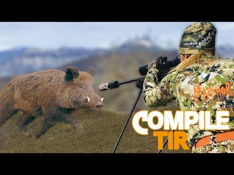 Amazing Hunting 50 Kill Shots -  2019