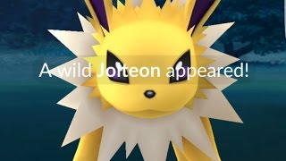 A Wild Jolteon Has Appeared! ⚡ Can Jonno Catch It?!