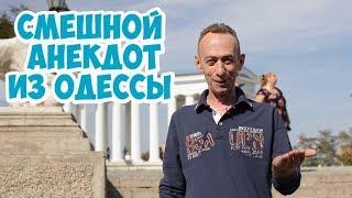 Лучшие одесские анекдоты Анекдот из одесской аптеки