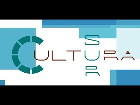 #8 #ENVIVO | Emisión del programa #CulturaSur #VaEnTuDirección.