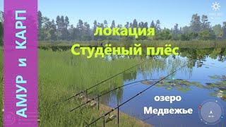 Русская рыбалка 4 озеро Медвежье Амур и карп на кокос