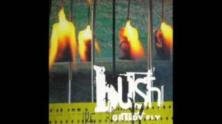 Bush - Old (EP Greedy Fly 1997)