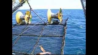Squid Fishing (commercial distant-water jigger), South Atlantic. Pesca de calamar en el Atlantico