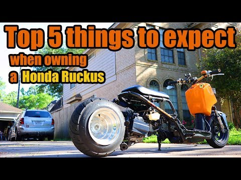 Top 5 things to expect when owning a Honda Ruckus #HondaRuckus #Ruckus