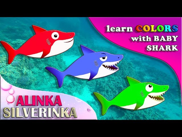 Kid Shark Sing and Dance with Nursery rhymes song for kids. Lets sing Animal song together