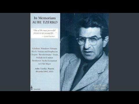 Visions And Prophecies / Moderato (Poco Lento) (Bloch)