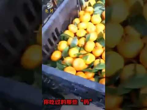 Не покупайте  маленькие китайские мандарины а лучше вообще не покупайте
