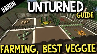 Unturned Farming Tutorial, Best Vegetable To Farm?  Advanced Building Tutorial