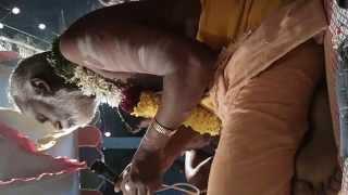 Mr.Gurunatha Ayyappan Gudiyatham song