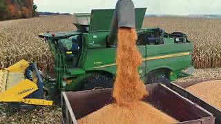 Збирання кукурудзи на зерно. Гібрид кукурудзи Компанії Маїс Дніпро Візир