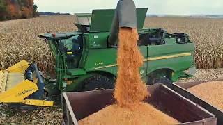 Як збирають кукурудзу на зерно. Уборка кукурузы на зерно в Украине. How to harvest the corn?