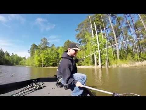 7lb largemouth bass at jordan lake