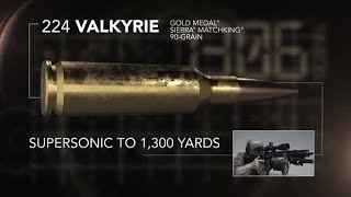 Introducing 224 Valkyrie