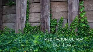 BONDAD: Meditacion Guiada de 1 Minuto | A.G.A.P.E. Wellness