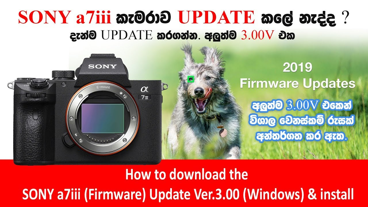 How to download & Update the sony a7iii Firmware Ver 3 00 (Windows) +  install