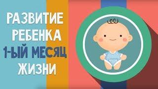 видео Развитие Ребенка До года | Раннее Развитие Ребенка | Развитие Детей | Развивающие Игры для Детей