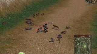 Metin 2 Combat Video